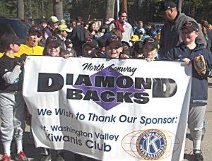 The Diamondbacks